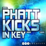 Сэмплы бочек - Audentity - Phatt Kicks In Keys