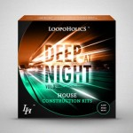 Сэмплы Loopoholics Deep At Night Vol.3 House Construction Kits