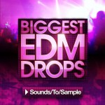 Сэмплы Sounds To Sample Biggest EDM Drops