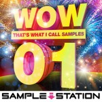 Сэмплы Sample Station Wow EDM Samples