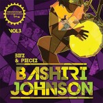 Сэмплы перкуссии - Industrial Strength Records Bashiri Johnson Bitz and Piecez Vol.3