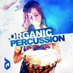 Сэмплы Delectable Records Organic Percussion