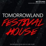 Сэмплы Big Sounds Tomorrowland Festival House