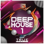 Сэмплы True Samples DEEP HOUSE 1