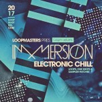Сэмплы Loopmasters Immersion Electronic Chill