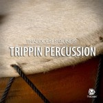 Сэмплы ThaLoops Trippin Percussion Loops