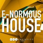 Сэмплы Audentity E-Normous House