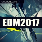 Сэмплы Function Loops EDM 0017