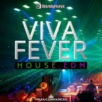 Сэмплы LBandyMusic Viva Fever House EDM