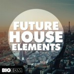 Сэмплы Big EDM Future House Elements