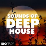 Сэмплы Big EDM Sounds Of Deep House