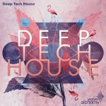 Сэмплы Wave Alchemy Deep Tech House