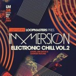 Сэмплы Loopmasters Immersion Electronic Chill 2