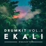 Сэмплы Splice Sounds Ekali Drumkit Vol 3
