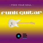 Сэмплы Feed Your Soul Music Feed Your Soul Funk Guitars