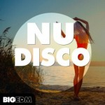 Сэмплы Big EDM Nu Disco