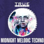 Сэмплы True Samples Midnight Melodic Techno