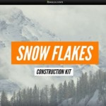 Сэмплы Jungle Loops Snow Flakes