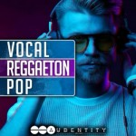 Сэмплы Audentity Records Vocal Reggaeton Pop