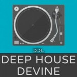 Сэмплы Deep Data Loops Deep House Devine