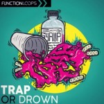 Сэмплы Function Loops - Trap or Drown