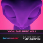Сэмплы Vocal Bass Music Samples