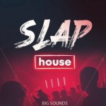 Сэмплы Big Sounds Slap House