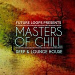 Сэмплы Future Loops Masters Of Chill