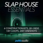 Сэмплы Baltic Audio Slap House Essentials