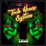Сэмплы True Samples Tech House System