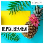 Сэмплы Concept Samples Tropical Breakbeat