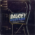 Сэмплы Julez Jadon Saucey Guitars Vol. 5