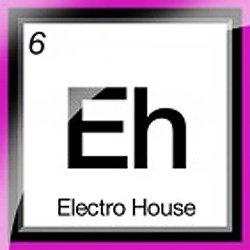 Сэмплы Sounds To Sample Electro House Elements (06-07) S2S (WAV)