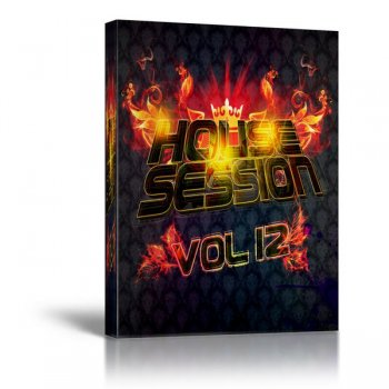Wow! Records House Session Vol 12 (MIDI файлы)