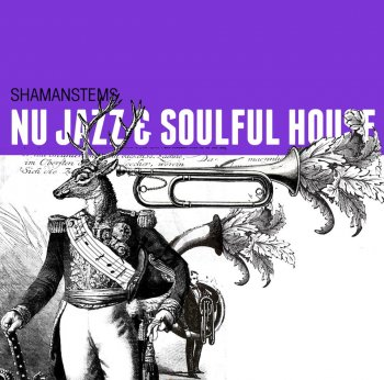 Сэмплы ShamanStems Nu-Jazz & Soulful House (WAV)