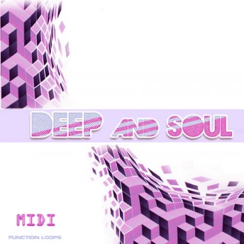 MIDI файлы и сэмплы - Function Loops DEEP & SOUL: Progressive Loops