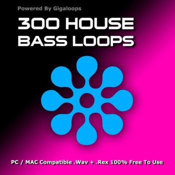 Сэмплы Giga Loops - 300 House Bass Loops