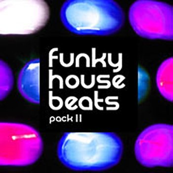 Сэмплы Loopmasters - Funky House Beats Volume 2