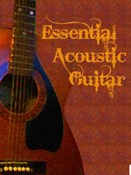 Сэмплы гитары Fix-A-Flat Essential Acoustic Guitar