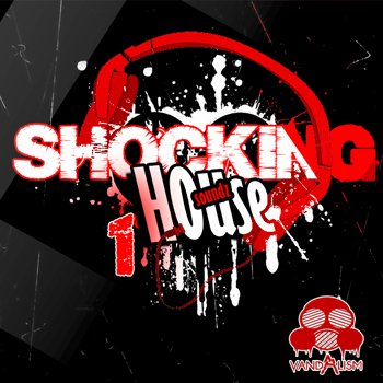 Пресеты Vandalism Shocking House Soundz 1 For Sylenth1