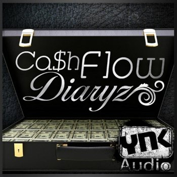 Сэмплы YnK Audio Cash Flow Diaryz