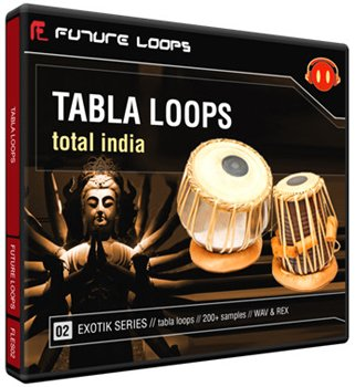Сэмплы Future Loops Sarod Loops Total India