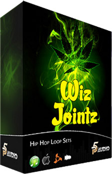 Сэмплы P5 Audio Wiz Jointz Hip Hop