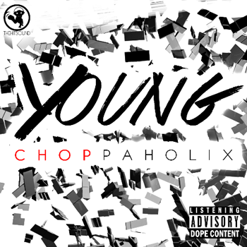 Сэмплы The Hit Sound Young Choppaholix