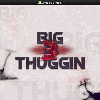 Сэмплы Jungle Loops Big Thuggin 3
