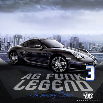 Сэмплы Big Citi Loops A G Funk Legend 3