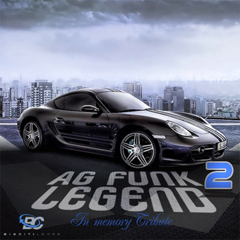 Сэмплы Big Citi Loops A G Funk Legend 2