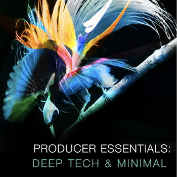 Сэмплы SPF Samplers Producer Essentials Deep Tech and Minimal
