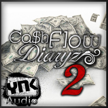 Сэмплы YnK Audio Cash Flow Diaryz 2