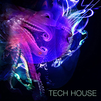 Сэмплы SPF Samplers Tech House Samples